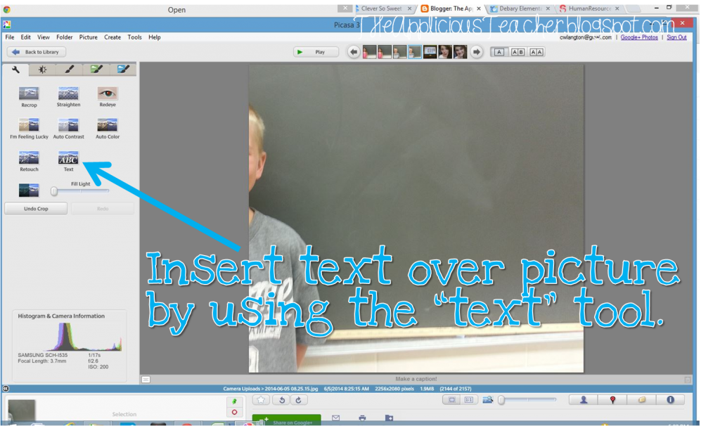 using picasa to add text to pictures