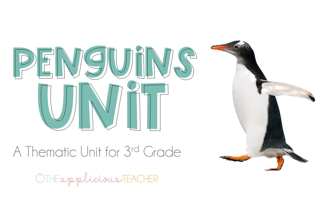Penguins unit for 3rd grade