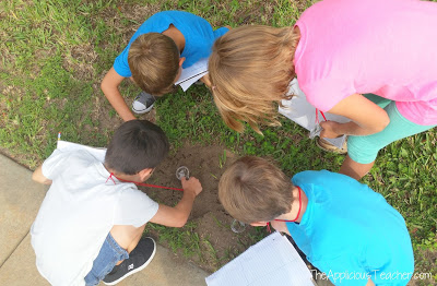 Using a hand lens to make observations