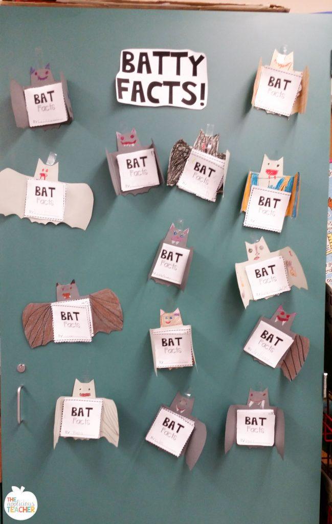 Bat Facts bulletin board