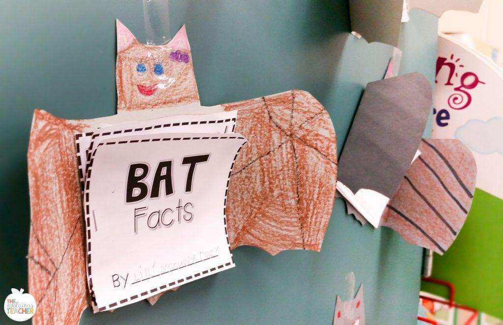 Bat facts bat craft