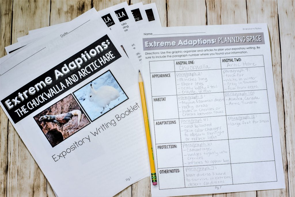 Responding to text articles, text based writing articles for classroom graphic organizer