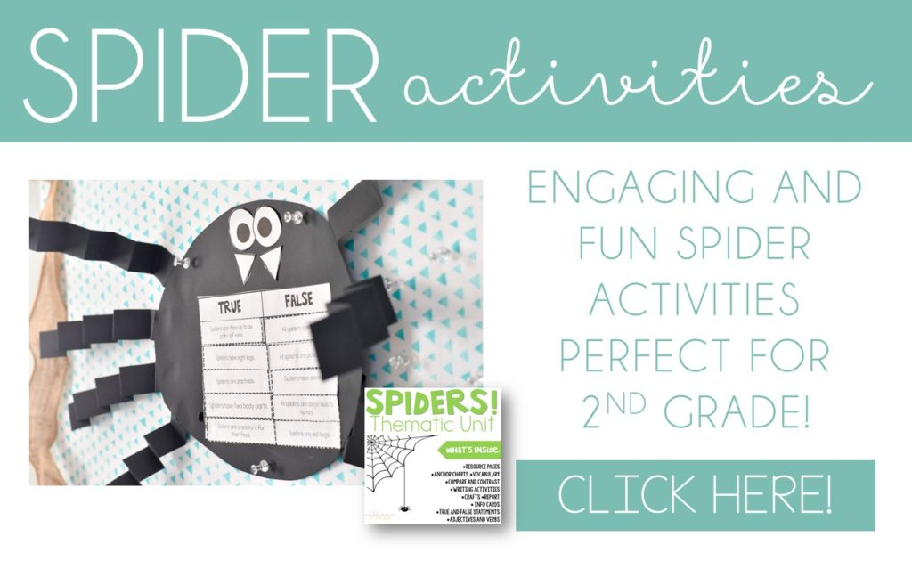 spider unit activities for 2nd grade