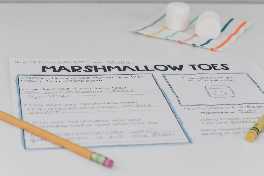 marshmallow toes worksheet